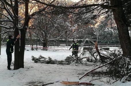 Parco Matteotti resta chiuso per neve ma la neve non c'è